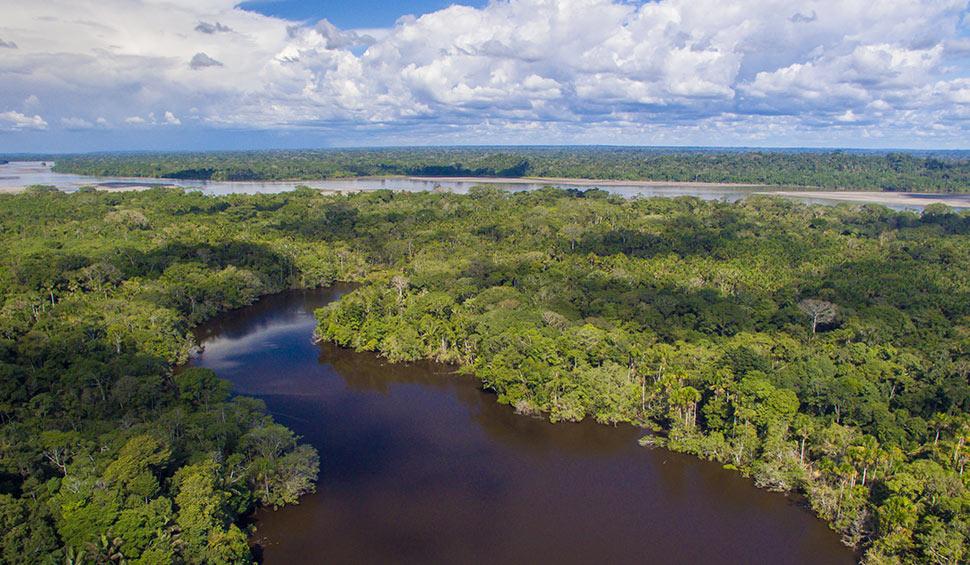 the yasuni amazon park