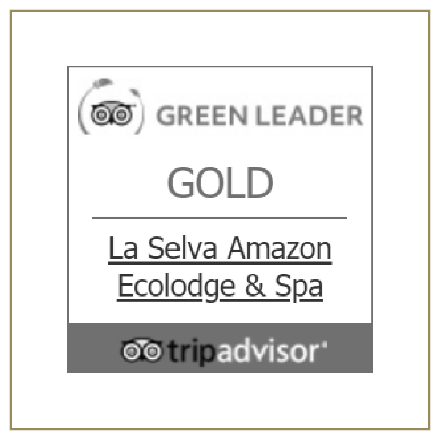TripAdvisor Green Leader Gold