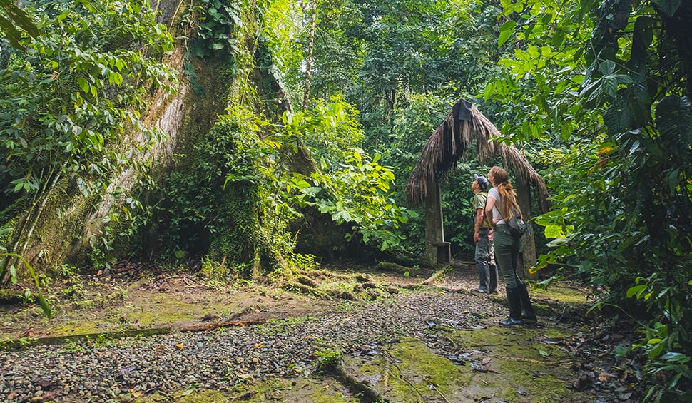 tourist and guide in an amazon excursion