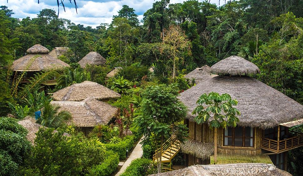 amazon jungle hotel