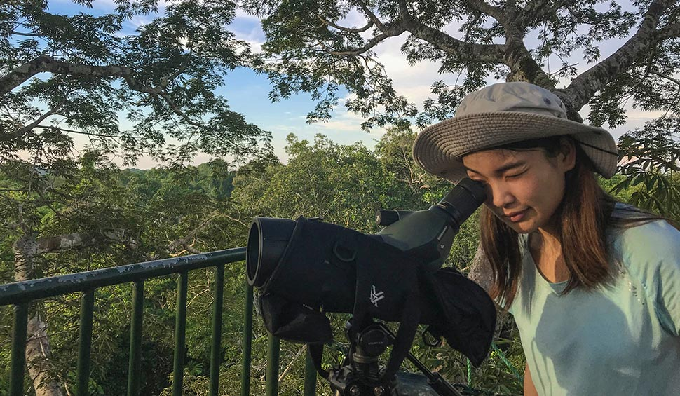 woman observing through a telescope in the jungle